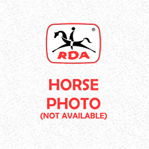 Horse Profiles | RDA Raymond Terrace Riding For The Disabled Horse Profiles